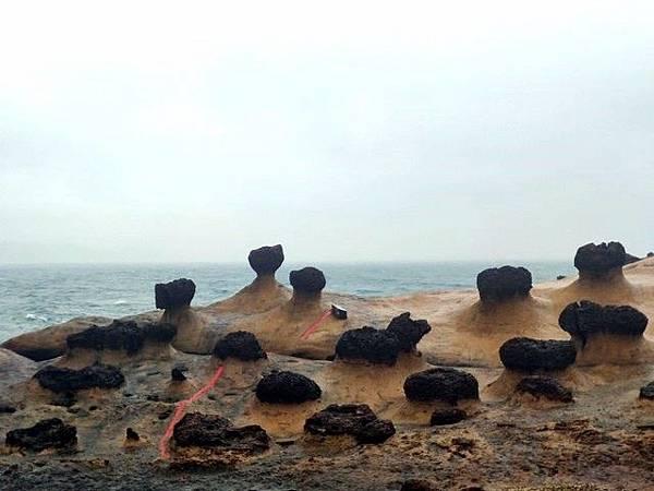 IMG_015野柳-蕈狀岩.jpg