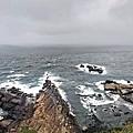 IMG_039野柳-海岸景觀.jpg