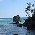 IMG_035布拉伯岩礁(Bulabog Rock).jpg