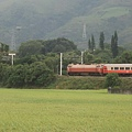 IMG_036火車穿越稻田.jpg
