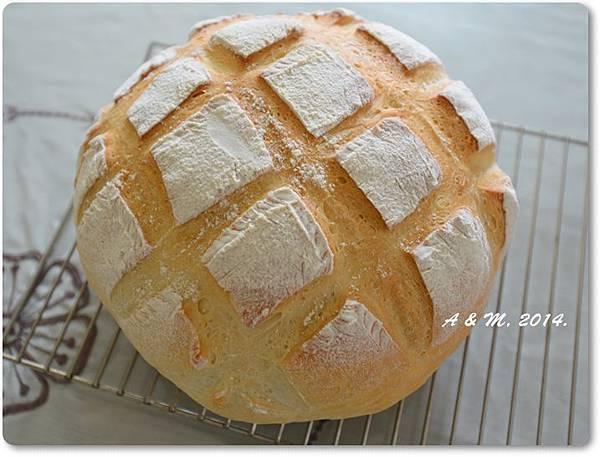圓頭麵包3