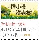 台灣小樹2.jpg