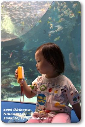 美之海水族館3.jpg