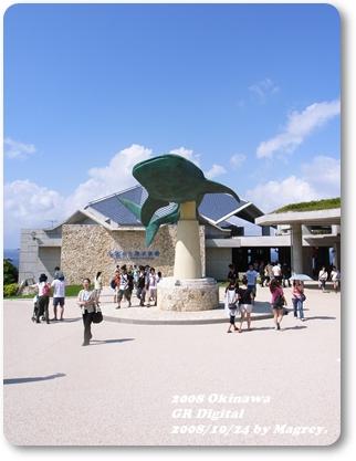 美之海水族館5.JPG