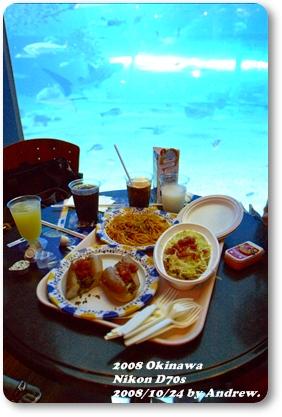 美之海水族館8.jpg