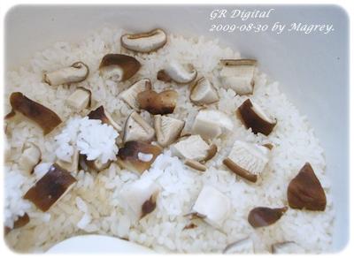 KA鍋鮮菇飯2.JPG