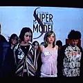 Search for a Supermodel