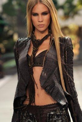 Roberto Cavalli S/S 2011 : Erin Wasson