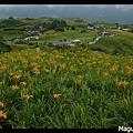 Frame_IMGP6470s.jpg