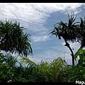 Frame_IMGP6701s.jpg