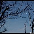 Frame_IMGP6828s.jpg