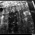 nEO_IMG_PIC022s.jpg