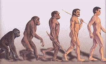人類進化史