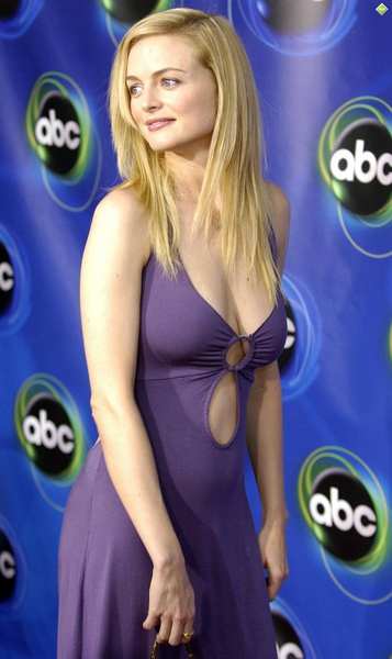 Heather_Graham_110408_90.jpg