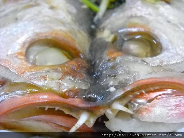 2013真北平年菜_港式紅斑魚 (2)