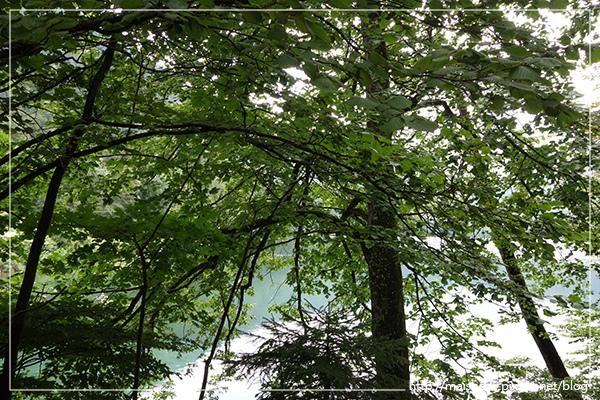 Aug13新天鵝堡-康斯坦士_076.jpg