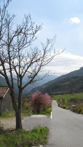 麻麻愛ㄉ山景