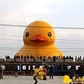 Rubber Duck -1.jpg