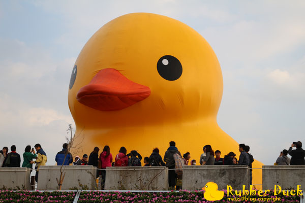 Rubber Duck -2.jpg