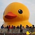 Rubber Duck -2.jpg