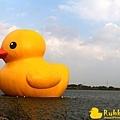 Rubber Duck -4.jpg