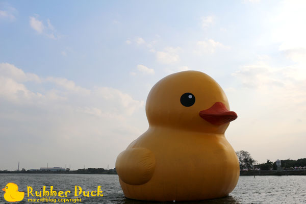 Rubber Duck -7.jpg