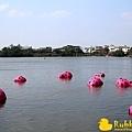 Rubber Duck -19.jpg