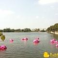 Rubber Duck -21.jpg