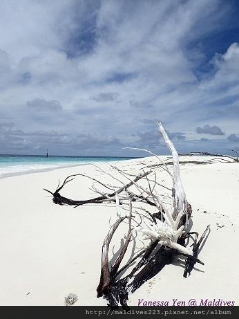 White sand bank.JPG