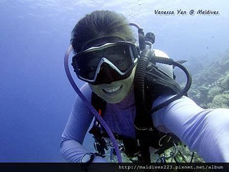潛水的感覺真好