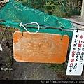 20081002郭公湯團09.jpg