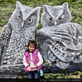 OWL0005.jpg