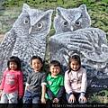 OWL0072.jpg