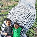 OWL0075.jpg