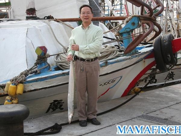 黃鰭白帶魚(肥帶).jpg