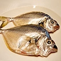 金針魚.JPG