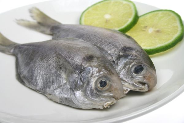 肉魚.jpg