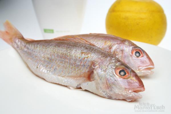 紅魚.jpg