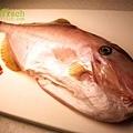 剝皮魚.jpg