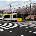 IMG_8681.JPG