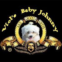寶貝強尼獅獅版