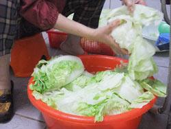 酸白菜06.jpg