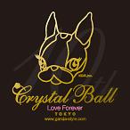 091125-thumb-feature-ut-crystalball.jpg