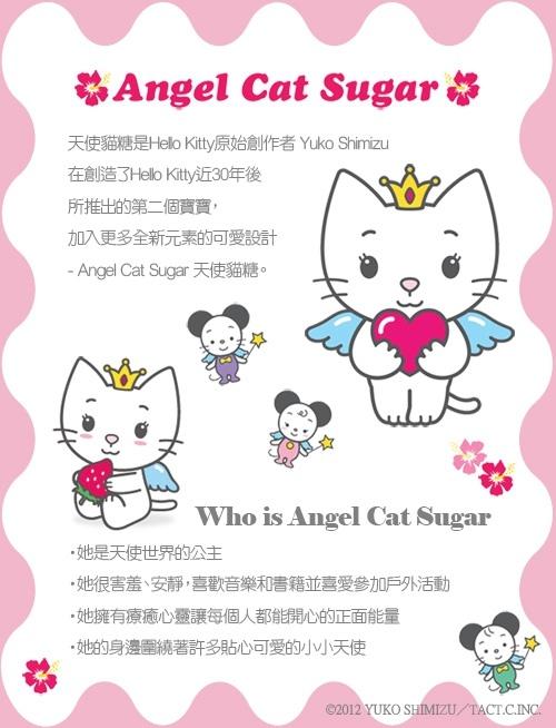 天使貓暖暖被 說明