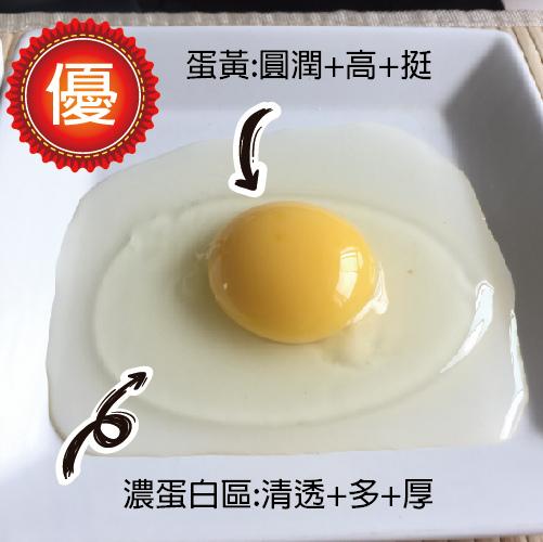 好華雞蛋1.jpg