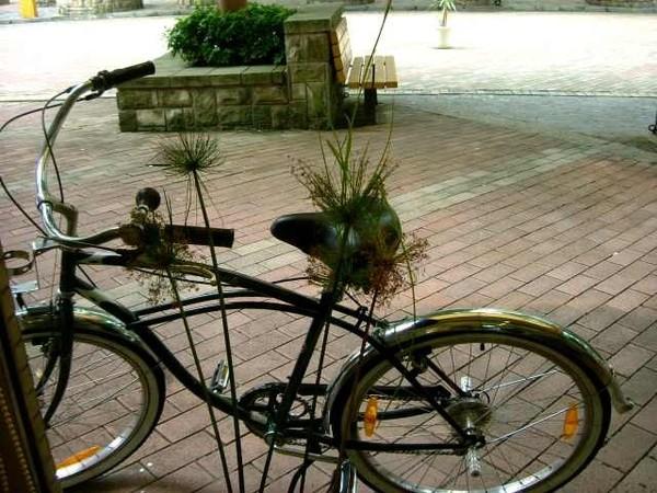 正勤的腳踏車