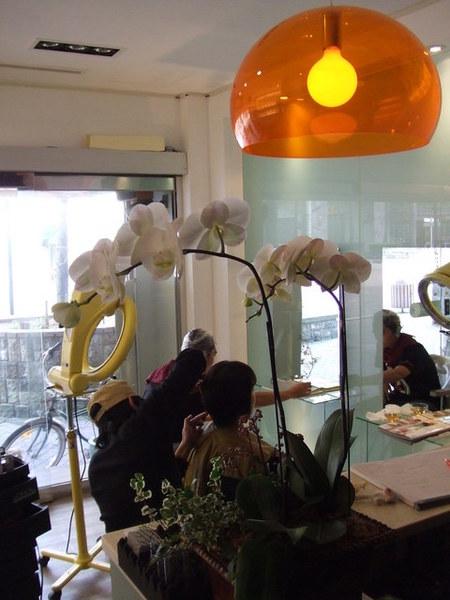 正勤的櫃檯上換了新的花
