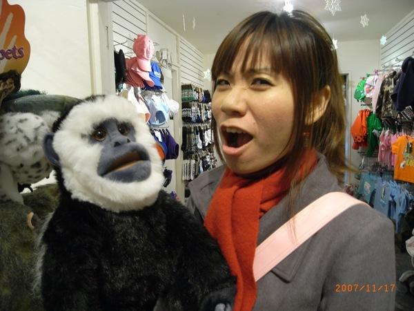 與猴子對話