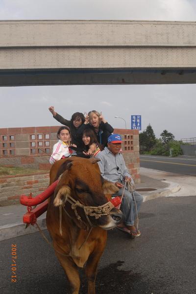坐著牛車要往抓魚的地方去