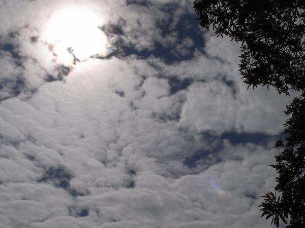 這是今天的天空